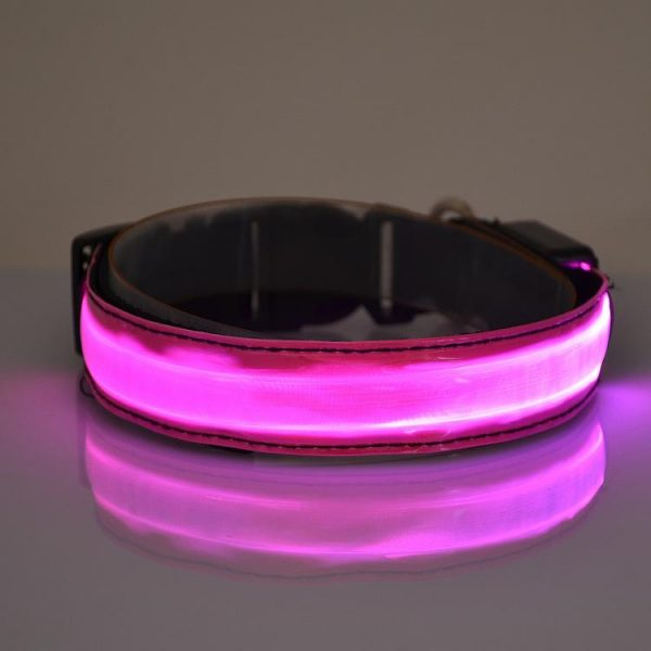glow in the dark, LED light up, flashing dog collar