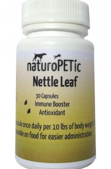 stinging nettle leaf