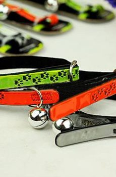 Reflective cat collar in shiny green, red, or black with silver bell and black paw print pattern.