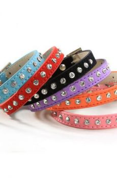 Colorful suede cat or small dog collar with single row rhinestone bling
