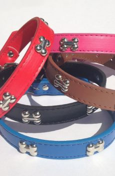 leather dog collar with silver bone studs red black brown blue pink
