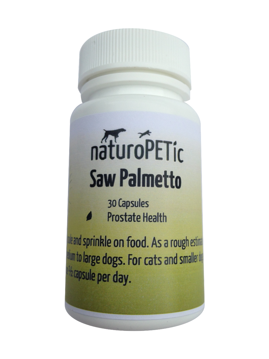 saw palmetto supplement for prostate cancer