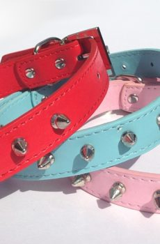 spiked leather dog collar with silver spikes red blue pink